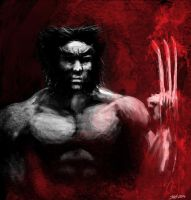 Wolverine by Suc-of