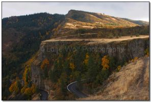 Autumn in the Gorge  001 by LoneWolfPhotography