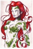 Poison Ivy by OriginalNick