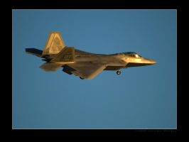 OT Raptor Sunset Arrival by jdmimages