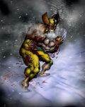 Wolverine by Ogmosis