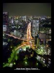 View From Tokyo Tower 2 by lhs