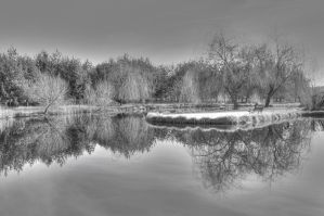 Reflection 1 by lyndisfarne