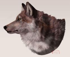 Wolf Icon by akeli