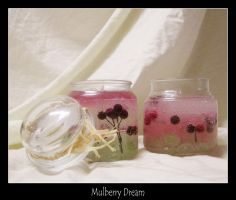 Mullberry Dream by CaitesCandles