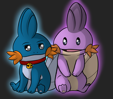 Mudkip Buddies by Squiggy13