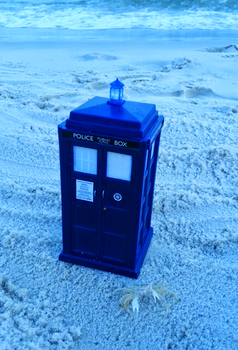Mini Macra and the TARDIS by TheDoctorsNurse