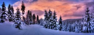 Winter Dream Panorama by stg123