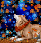 Autumn Dog by Neoro-Chan