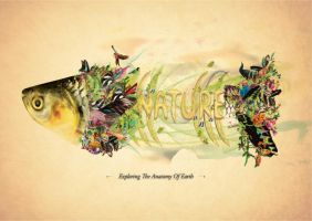 Dissecting Nature: Exploring The Anatomy Of Earth by helios1027