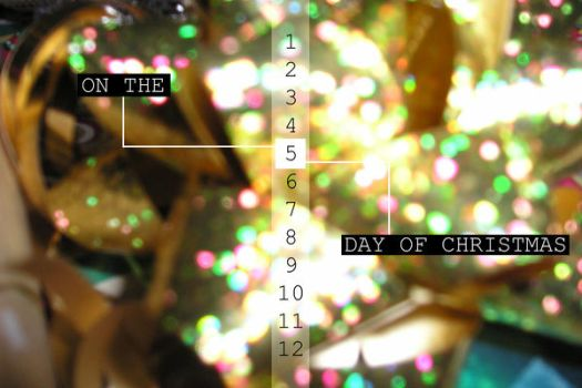 2009 5th Day of Christmas by 7x7