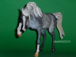 custom breyer weathergirl by ElizavetaGorojankina