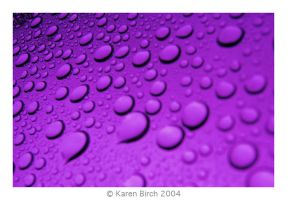 Purple Rain by karenbirch