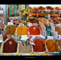 Spicy Spices by gianf