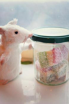 Mouse the sweet tooth by RayMilic