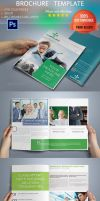 10 Pages Business Brochure by Ruthgschultz