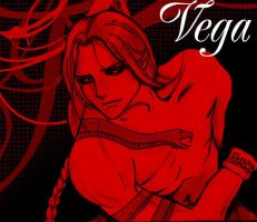 Street Fighter: Vega by TheHollowhole