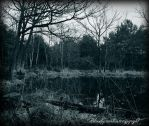 La mare aux fees  revisited by CountessBloody