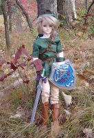 Link in the Forest by AmethystArmor