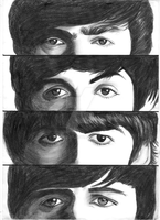 the beatles boys by bizdikbirt