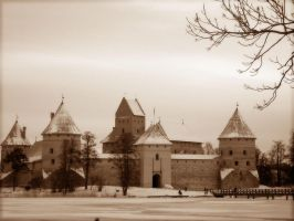 old castle by karolytea