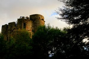 More of Caldicot Castle 4 by Tinap