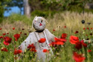 Scarecrow 01 Stock by lokinststock