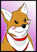 doggie from Eden of the East. by bluepen731