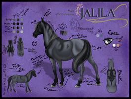Jalila Reference by Dreams-Horses