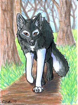 ACEO: Forest Path by WooflesArt