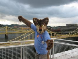 Zippy takes Pittsburgh by Rennon-the-Shaved