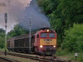M62 163 with freight in Gyorszabadhegy by morpheus880223