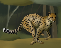 Cheetah+speedpaint by Owl-Flight