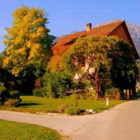 summer home of autumn by Shadows-in-Twilight