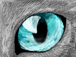 Cat Eye by Icognito-chan