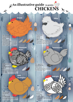 an illustrative guide to pretty chickens by Hikari-Starr