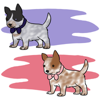 Puppies C: by Alcemistnv