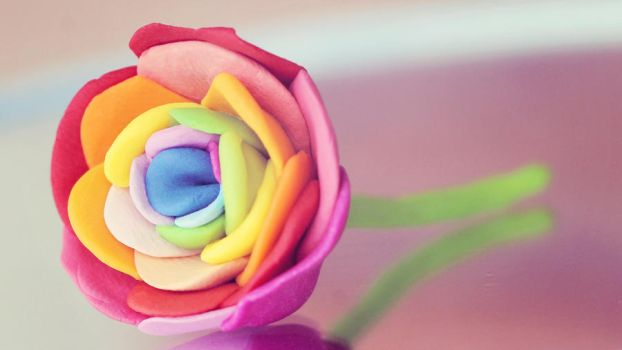 Rainbow Rose by Pinepassionmango