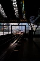 Morning Train's Approach by fatedquest