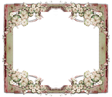 Flower Frame png stock by mysticmorning