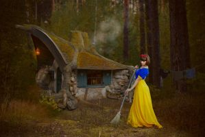 Snow White visiting gnomes. collage by kirina66