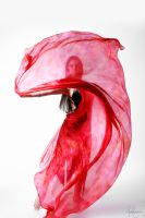 Belly Dancer Veil Stock 11 by LoryenZeytin
