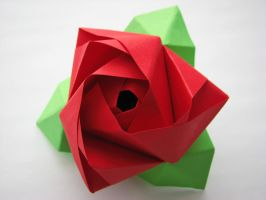 Origami Rose Cube by EccoingMark