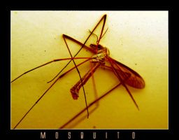 Mosquito by PaperMachete