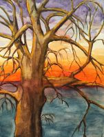 Winter Tree and Sunset by mybuttercupart