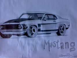 Mustang by metak