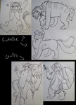 Cutelle // GuIIs by The-Rainy-Wolf