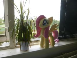 day 1.4 - Fluttershy meets Frank by verolesh
