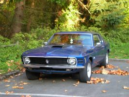 My Mustang in Fall 2 by Bspacewiz2