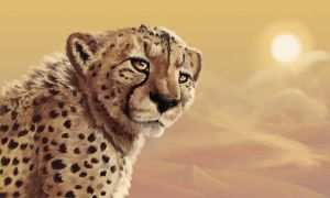 Cheetah in the Desert by BlackjackConcpiracy